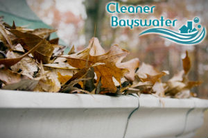 gutter-cleaners-bayswater